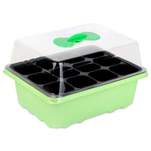 Schramm® serre intérieure pépinière boîte 1, 2 ou 3 pièces 38x24x18 cm mini serre pépinière serre pépinière serre avec couvercle et ventilation, Anzahl:1 Stück