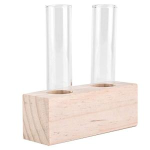 Verre de Plante Tube à essai en Verre Pot de Fleur Plante hydroponique Vase Terrarium conteneur décor à la Maison avec Support