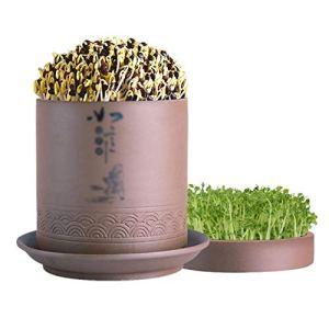 WSJTT Fèves germées Machine, Home Pot en céramique Sable Violet