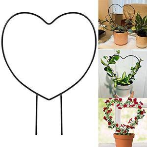 æ— Lot de 2 supports pour plantes grimpantes – 34,3 cm – Antirouille – En métal – Pour plantes grimpantes – Pour plantes grimpantes d'intérieur