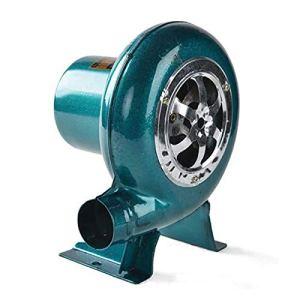 CFYP Ventilateur Électrique à Vitesse Variable – Ventilateur de Barbecues 220V Ventilateur de Forge à Charbon – pour Barbecue, Ventilateur de Cheminée, 30W / 40W / 50W / 60W / 70W / 80W / 100W