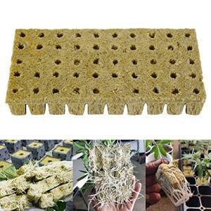JTWEB Laine de Roche 50 Cubes de Culture Soilless 3X3X4cm, Laine de Roche Hydroponique Plateau Démarrage Semences de Plantes Grow Feuille Bloc Propagation Cloning