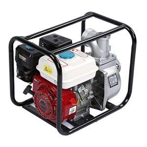 Motopompe à essence 13 000 GPH 6,5 HP 3,6 L 3 pouces