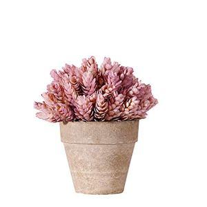 Plantes Fausse Plante en Pot Plantes D'extérieur Décor à la Maison Artificielle Cactus Plantes en Pots Plantes Face Intérieure Petit Pink