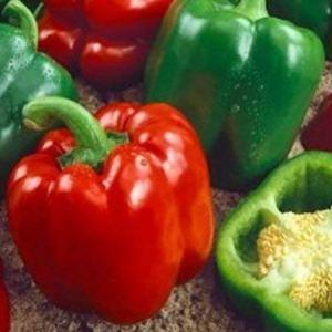 Alick 20 graines de légumes de poivron géant