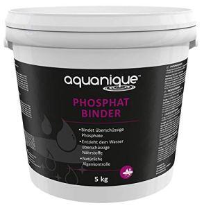 AQUANIQUE chélateur de Phosphate 5 kg, pour Les étangs/bassins, Convient pour jusqu'à 100.000 l, sans Danger pour Les Animaux et Les Plantes
