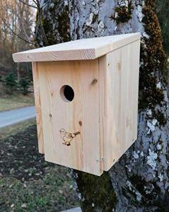 Nichoir en kit (NB32) pour moineaux, mésanges charbonneuses, etc. – En bois de pin de 18 mm d'épaisseur, mangeoire à oiseaux avec trou d'entrée de 32 mm.