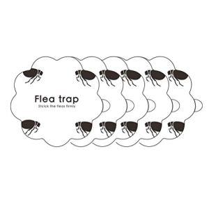 Piège à puces, 5 pièces Autocollants piège à puces pièges à puces en Forme de Citrouille pour la Maison Chambre Animal Domestique Chasse Outil d'élimination des puces
