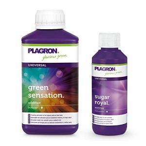 Plagron Green Sensation 250 ml et Sugar Royal 100 ml avec code d'action