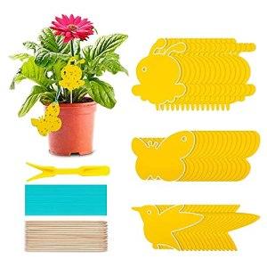 60 pièces de plante auto-adhésive à plaque jaune plug-in à moucherolle suspendue jaune, peuvent résister aux pucerons, aux moustiques, aux mouches des feuilles et aux mouches blanches Piège à insectes