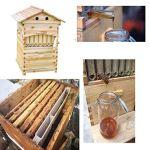 AISENPARTS Kit de maison de ruche dapiculture en bois et 7PCS Auto Flow Bee Comb Hive Frames Honey Automatic Supply Apiculture Tool