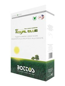 Bottos Semences pour la pelouse Bleu Royal 1 kg