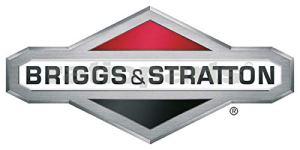 BRIGGS & STRATTON O-Ring