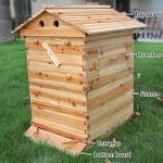 CRZJ Balier de Ruche en Bois, House d'abeille, Honey Honey Beehive Behive Bood Box House Max 7pcs Auto Flow Flow Frame Manque,Bee House Only