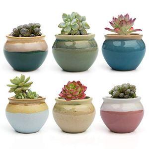 FairyLavie 7CM Pot de Plantes Succulents Céramique, Petits Pots Rustique Mignon pour Plantes, Parfait pour Maison Bureau Décor pour Famille Amis Collègue, Lot de 6