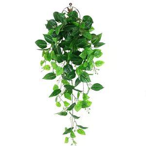 LHHE Trois Fausses Plantes, décoration Murale intérieure Vigne grimpante décoration intérieure et extérieure (Pas de Panier)