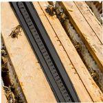 Ruche d'abeille Beetle Blaster plastique petit coléoptère piège Apiculture outils réutilisables Beetle Attraper 12PCS