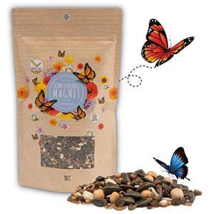 200g Graines de prairie à papillons pour un pré fleuri coloré – mélange de graines de fleurs sauvages riches en nectar pour les papillons