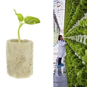 50 pièces Cubes de laine de roche Rockwool Starter Plugs Démarreur de culture hydroponique Convient à Propagation des racines des plantes