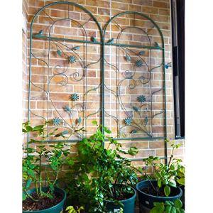 ARCH WRJ de Jardin, Pavillon rosiers Tonnelle Plante grimpante, Tuteur Treillis Jardin Grimpantes Rose Arcade Tubulaire pour Balcon Jardin Potager Pré