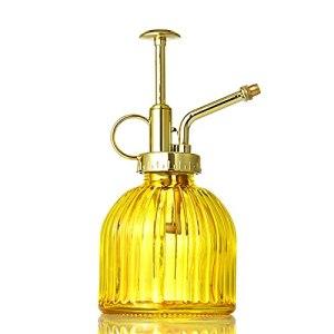FGASAD Vaporisateur transparent vintage pour plantes, 200 ml, petit arrosoir décoratif en verre avec pompe dorée