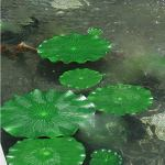 Lot de 10 plantes artificielles flottantes pour réservoir d'eau – Pour mariage, maison, étang, piscine, décoration de jardin