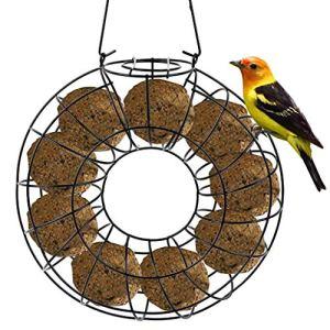 Olgaa Mangeoire à oiseaux circulaire en métal à suspendre pour boules de graisse