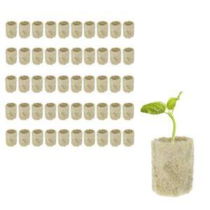 Rockwool Cube Rockwool Starter Plugs Rockwool Cube Propagation hydroponique Bloc Légumes cylindriques Serres Culture Seedling Jardin Accessoires 50pcs