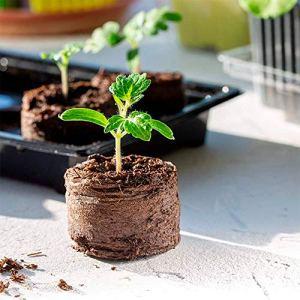 50PCS Pastille de Tourbe Compressée Gonflants avec Nutriments Bloc de Nutrition pour Semis pour Culture des Plantes de Jardin Propagation Germination (50 PCS)
