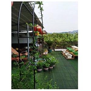 Arche Jardin Support pour Plante Jardin Trois Dimensions Métal Bois Longue Durée Vie Bonne Stabilité Pas Déformation Blanc Noir