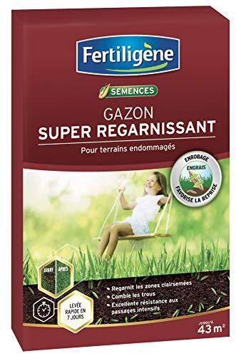 Fertiligene Gazon Super Regarnissant, 43m²