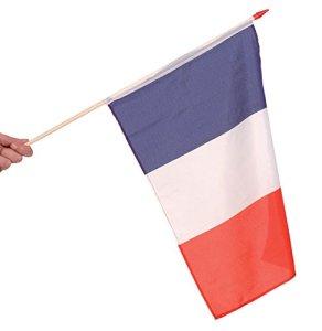 France DRAPEAU 45X30cm avec Hampe