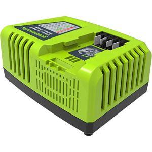 Greenworks Chargeur De Batterie G40UC4 (Li-Ion 40 V 4A 30 min Temps De Charge Avec Batterie 2 Ah Adapté À Tous Les Appareils Et Batteries De La Série 40 V Greenworks Tools)