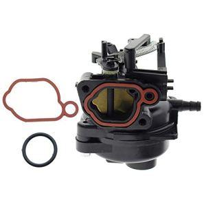 Haplws 799584 Carburateur de Tondeuse adapté au Moteur Briggs Stratton 9P702 09P702 550EX avec 2 Joints