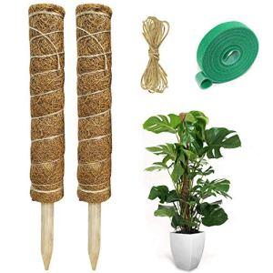 Hongyans 2 Pièces Tuteur Plante Support Plante Grimpante Tuteur Coco pour Plante Monstera Maison Jardin avec 1 Rouleau Serre Câbles et 1.5m Ficelle de Jute (40 cm)
