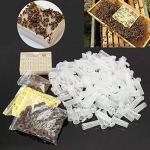 Kit d'élevage pour la reine des abeilles, la reine des abeilles, le système d'apiculture, l'apiculture, la cage, les outils d'apiculture