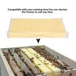 Lot de 7 peignes en plastique pour ruche