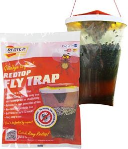 Red Top Fly Traps Lot de 2 pièges à mouches Rouge
