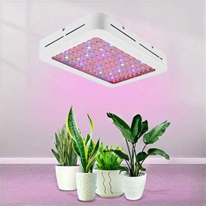 CATLXC Lampes de croissance LED 1000 W, spectre complet pour serre, plantes d'intérieur, tente de culture