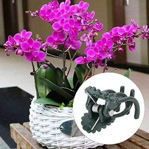 Clips de support de plante, pince de support de plante Clip de support de plante Clip de plante en forme de fleur, pour la plantation de serre Fournitures de jardinage de cour Accessoires(green)