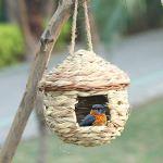 Dasing Grass Bird Hut, Lieu de Repos Confortable pour Les Oiseaux, Offre Un Abri Contre Le Temps Froid, Nichoirs TisséS à la Main pour Les Oiseaux Nid Parfait pour Finch et Canary