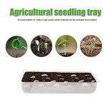 Eosnow Kit de démarrage de semences, Plateaux étanches Semences Transparentes à Usage Multiple Retenir Le ruissellement pour Les Plantes Micro-Vertes d'herbe de blé Petites Cultures hydroponiques