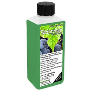 GREEN24 Engrais High Tech Vitis NPK pour Vigne et pour Plantes Baies et en Seau