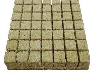 Grodan Hydroponic Culture agricole Bloc de semis de semis Substrat de culture de Soiless pour les bouchons de démarrage de Rockwool 50pcs