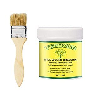 Jiaojie Scellant pour élagage et greffage d'arbre 30/100/300 g avec brosse pour branche de bonsaï