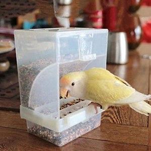 kangzhiyuan Mangeoire à oiseaux automatique en acrylique pour perroquet et pigeon