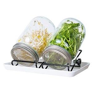 Kit de Pots de Germination 2 PCS Bocaux de Germination à Large Ouverture avec Couvercles en Acier Inoxydable Bac d'égouttage Support pour Germes de Soja Luzerne Salade