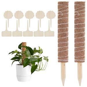 LRIO 2 pièces Tuteurs pour Plantes Grimpantes Coir Totem Pole Coir Moss Totem Pole Plant Support Stick en Fibre De Noix De Coco Support Stake Renewable Moss Stick pour Vignes Plantes Escalade