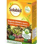 Maisange SOLABIOL – Engrais oliviers, figuiers et Plantes mediterraneennes 1kg500 – Nutrition Longue duree – SOLIVY750