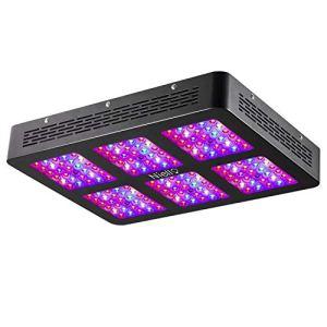 Niello LED 900W à double lentille optique, spectre complet pour la croissance et la floraison des plantes en intérieur (2 boutons, 12 bandes).